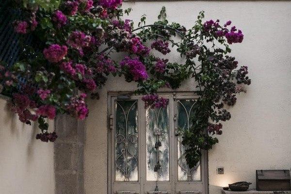 מתחם הכניסה והחצר